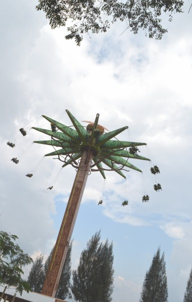 Fly up Jurassic Tree (1)
